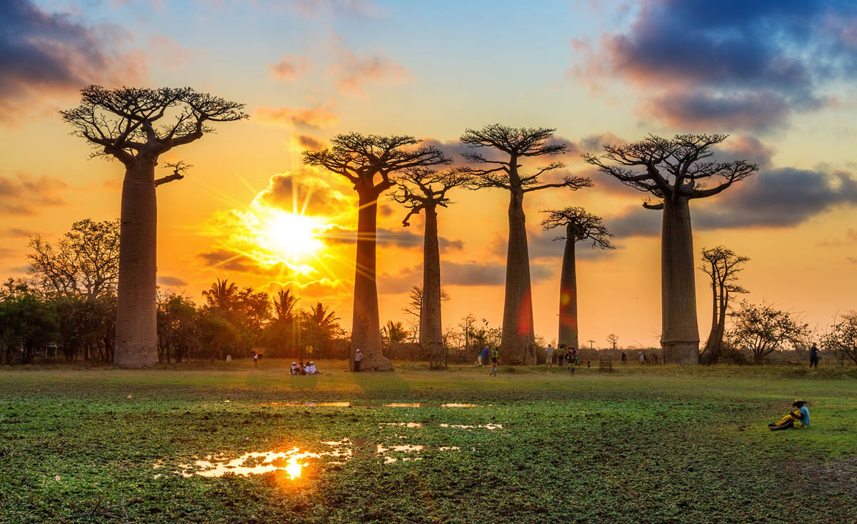 an introduction to the island country of madagascar Madagascar is officially known as the republic of madagascar this country is an island country in the indian ocean and is located in the coast of southeast africa.